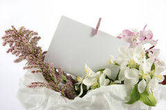 Greeting card over decorative box of white flowers Stock Photos