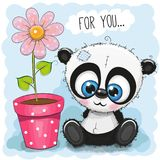 Greeting card Panda with flower. On a blue background Stock Photography