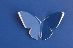Butterfly decorative Stock Images