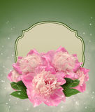 Greeting card with peonies Stock Photo