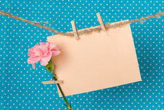 Greeting card with pink carnation. Pink carnation and a greeting card on a rope with clothespins against a bright blue background with white polka dots, greeting royalty free stock images