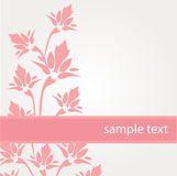 Greeting card with pink flowers Stock Photography