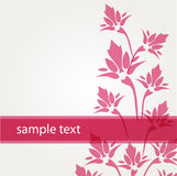 Greeting card with pink flowers Stock Photo
