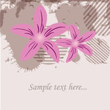 Greeting card with pink flowers Royalty Free Stock Image