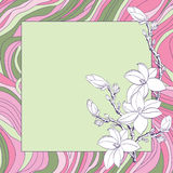 Greeting card with pink magnolia. Flowers Stock Images