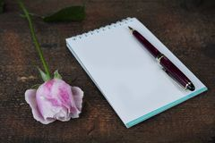 Greeting card with pink rose and fill or empty copy space. Royalty Free Stock Photography