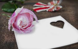 Greeting card with pink rose and fill or empty copy space. Royalty Free Stock Image