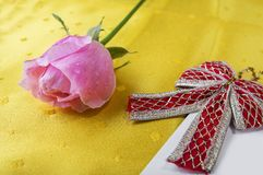 Greeting card with pink rose and fill or empty copy space. Royalty Free Stock Photo