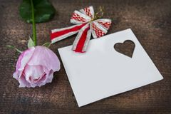 Greeting card with pink rose and fill or empty copy space. Stock Image
