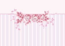 Greeting Card with pink roses Royalty Free Stock Photos