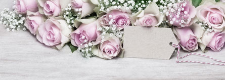Greeting Card, pink roses Royalty Free Stock Photos