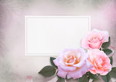 Greeting card with pink roses and card for text on a romantic vintage background. Beautiful vintage background with card for text or photo and pink roses Royalty Free Stock Photos