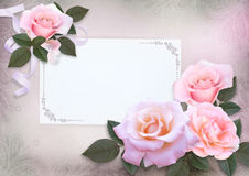 Greeting card with pink roses and card for text on a romantic vintage background Stock Image
