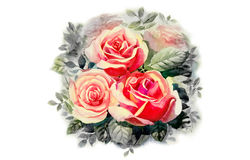 Greeting card with pink roses flowers. Stock Photo