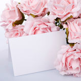 Greeting card with pink roses Royalty Free Stock Photography