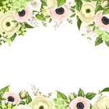 Greeting card with pink and white flowers. Vector eps-10. Stock Image