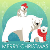 Greeting Card with Polar bear family. Stock Photos