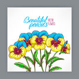 Greeting card with pretty pansies Stock Photos