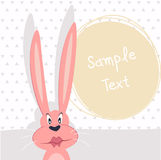 Greeting card. Rabbit Royalty Free Stock Photo