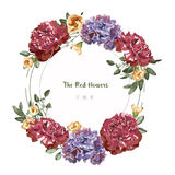 Greeting Card with red floral in the garden,  illustration , circle label Stock Photography