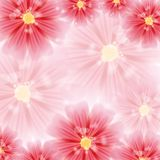 Greeting card with red flowers Royalty Free Stock Photo