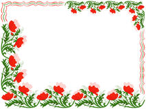 Greeting card with red poppies and colour lines Royalty Free Stock Photography