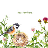 Greeting card with retro design: wild herbs, bird and nest. Watercolor Stock Photography