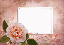 Greeting card with rose Stock Images