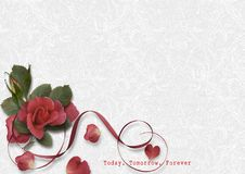 Greeting card with a rose. Valentine`s Day cards. Stock Image