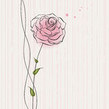 Greeting card with a rose Royalty Free Stock Images