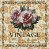 Greeting card. Roses. Beautiful frame. Stock Photos