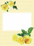 Greeting card and roses Royalty Free Stock Photos