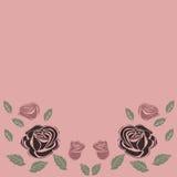 Greeting card roses wedding birthday holiday background. Stock Photography