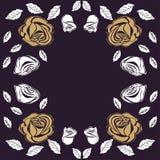 Greeting card roses wedding birthday holiday background. Stock Image
