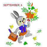 Greeting card of September 1, happy hare, cartoon on a white bac Stock Photography