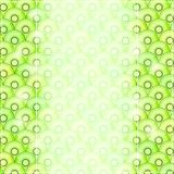 Greeting Card with Slices of Kiwi Pattern Stock Photography