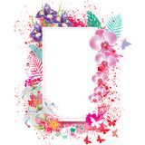 Greeting card with spray grunge background Royalty Free Stock Photo