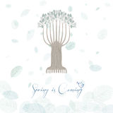 Greeting card. Spring is coming. Oak foliage. Royalty Free Stock Photo