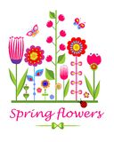 Greeting card with spring funny flowers Royalty Free Stock Image