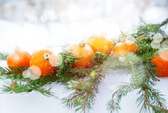 Greeting Card with Tangerines, boke and snowflakes. Greeting Card with Tangerines as Fir-tree Toy and Branch of Coniferous on White Snow, with boke and royalty free stock image