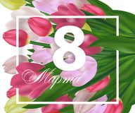 Greeting card template with flowers March 8 International Women`s Day. Background with tulips and text in Russian March 8. Vector. Illustration Royalty Free Stock Photo