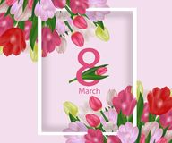 Greeting card template with flowers March 8 International Women`s Day. Background with tulips. Vector. Illustration Vector Illustration