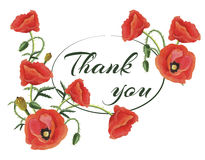 Greeting Card Thank you with Poppies Stock Photo