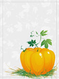Greeting card for Thanksgiving Stock Images