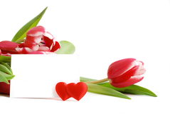 Greeting Card to St. Valentine's Day Royalty Free Stock Photography