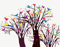 Greeting card with trees and birds Stock Image