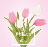 Greeting card with tulip flowers Stock Images