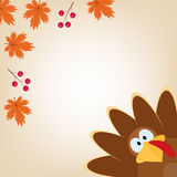 Greeting card with turkey in cartoon style. Funny character Thanksgiving. Happy Thanksgiving funny illustration. Flat style Royalty Free Stock Images