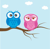 Greeting card with two lovely owls Stock Photos