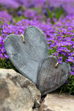 Greeting card two wooden hearts and purple blooms Royalty Free Stock Photo